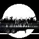 Street-Trucks-Semirremolque-Freauhauf-B03